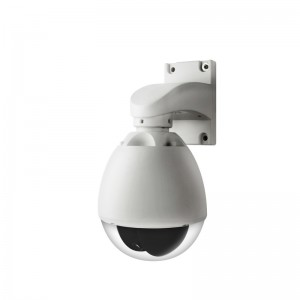 360° Pan 90°Tilt Indoor/Outdoor Weatherproof CCD Surveillance Camera